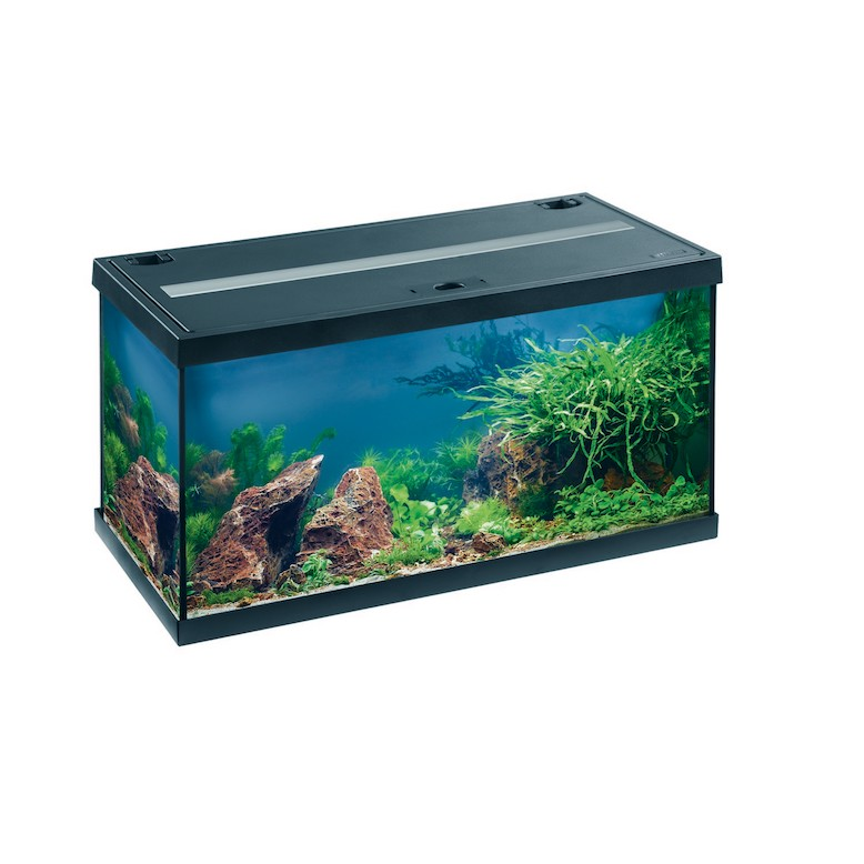 Отзывы О Интернет Магазине Aquariumtorg Ru